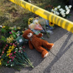 Instinctive Reactions to Mass Shootings: Destructive and Disappointing
