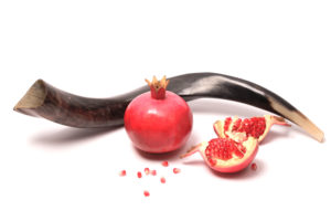 Pomegranates and Shofar, isolated